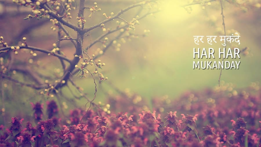 Har Har Mukanday Mantra Meaning + Chanting Meditation + HD Wallpaper Download