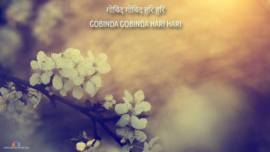 Gobinda Hari Mantra Wallpaper and Meaning
