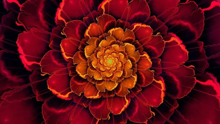 Chakra Meditation Music Root Balancing Healing