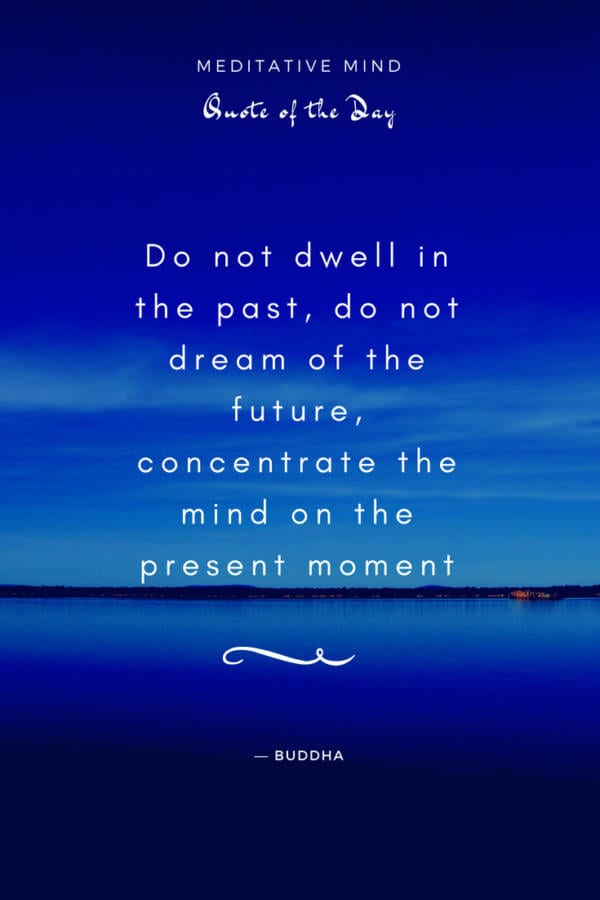 Daily- Quote - Do not dwell in the past, do not dream of the future, concentrate the mind on the present moment